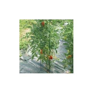 Laikiklis augal.1.1x180cm met/PE EVA8204 2
